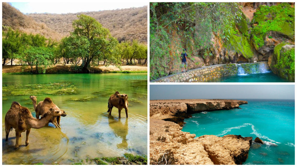 Salalah Oman (top ten tourist destinations in oman)